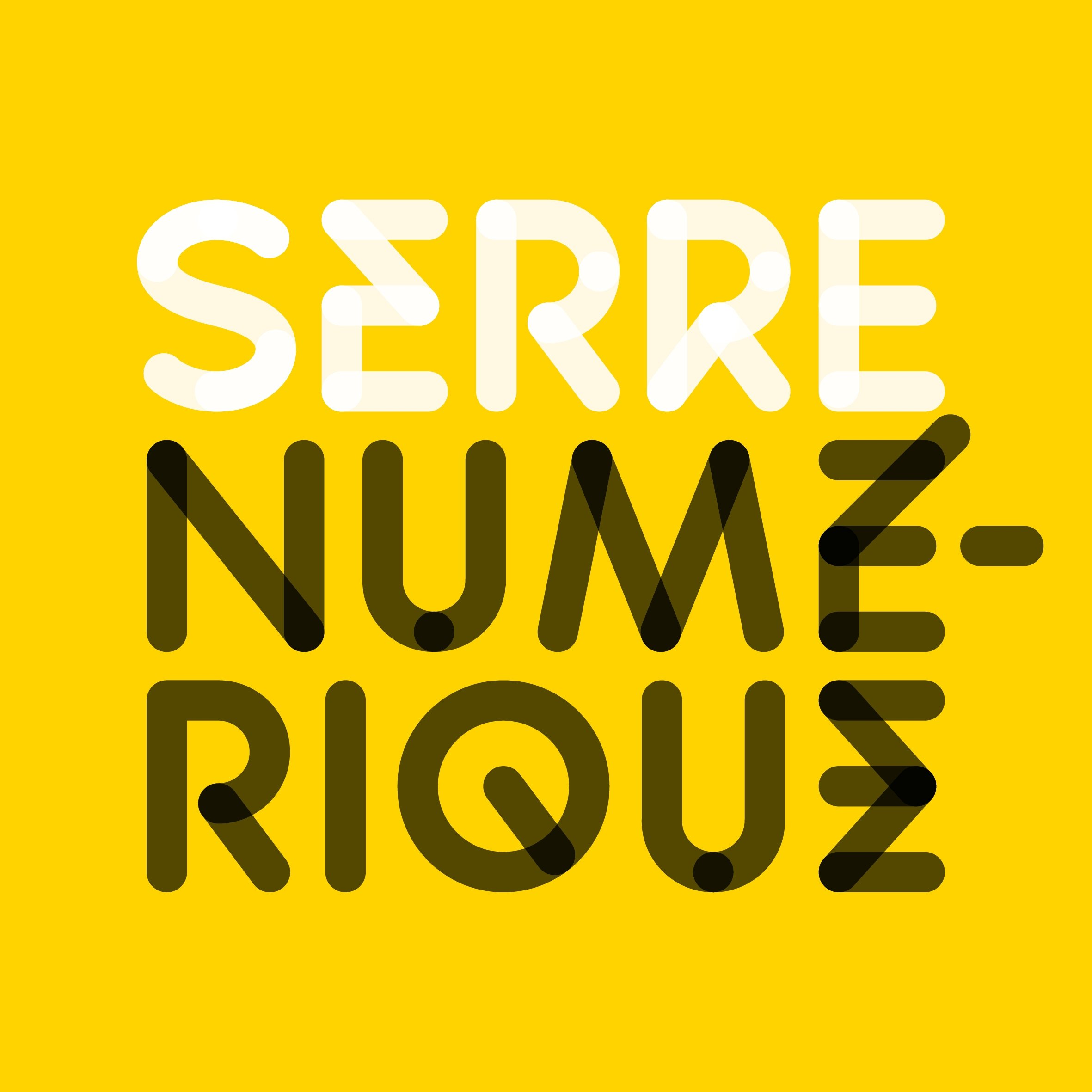 SERRENUMERIQUE-LOGO