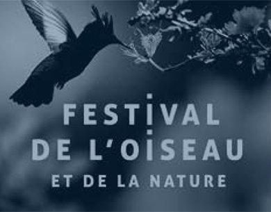 visu_festival_oiseau