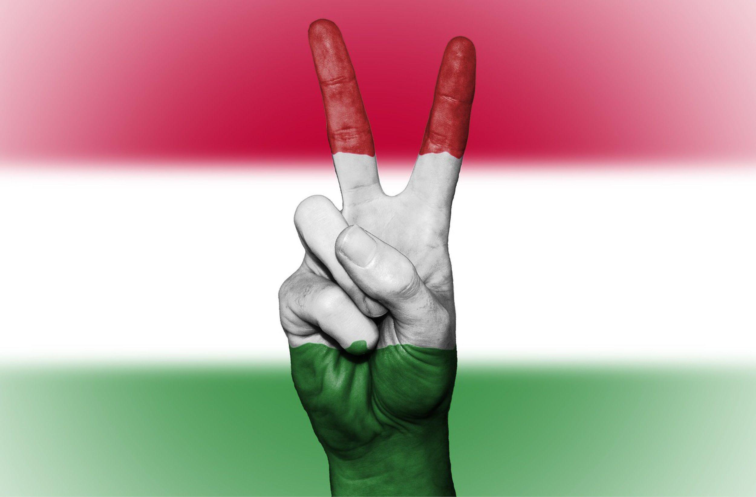 Hongrie, Pologne, République tchèque et Slovaquie : quelles opportunités ?