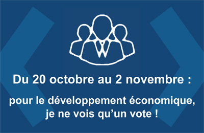 Carrousel-elections consulaires